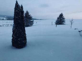 Goregous winterscape!
