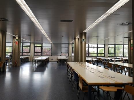 Quiet library scene