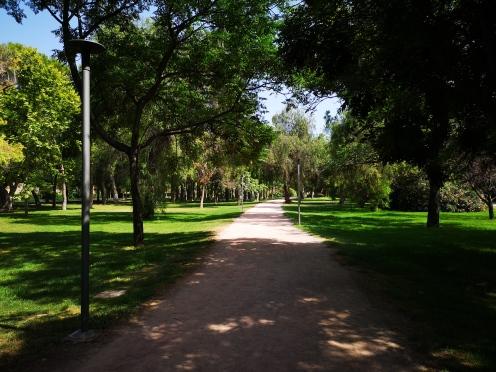 A long garden path