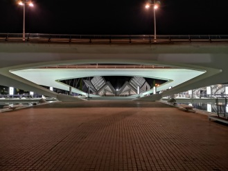 Night view of the City of Arts and Sciences from the bottom level