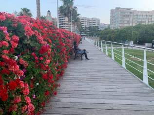Mariam on the Bridge of Flowers